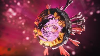 صورة خبراء يزعمون أن طفرة فيروس كورونا الجديدة أكثر عدوى!
